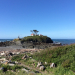 Wind blown light house Oregon coast