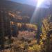 Fall Color Guanella Pass, CO