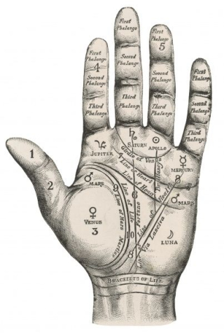 Palmistry-map-hand-570381